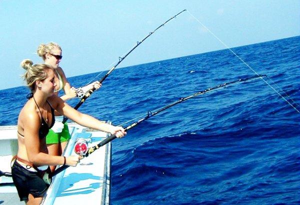 Hoạt động câu cá mực trên đảo Phú Quốc