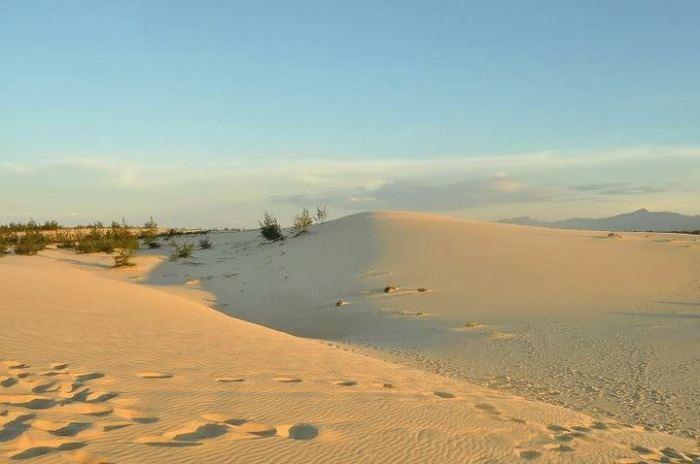 Đồi cát quang phú Quảng Bình một trong 5 đồi cát đẹp ở Miền Trung
