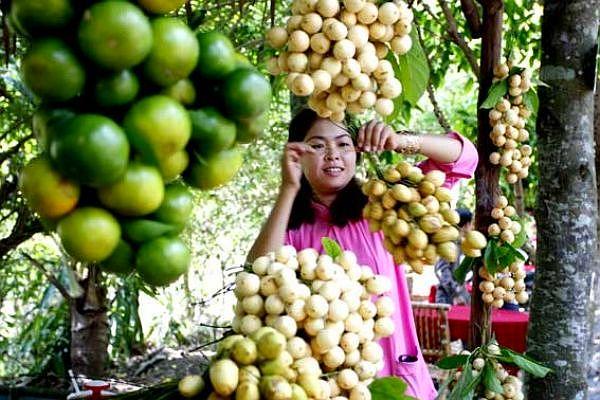 Khám phá những vườn trái cây ở Cần Thơ
