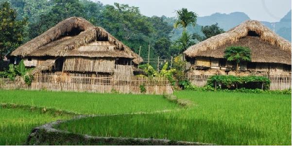Điểm tên homestay ở Hà Giang hấp dẫn khách du lịch