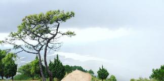 Du lịch khám phá đỉnh langbiang Đà Lạt