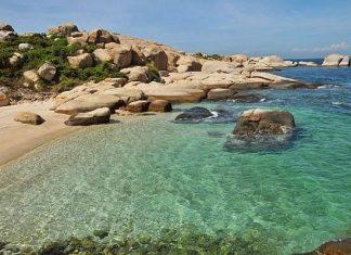 Du lịch Quy Nhơn khám phá đảo Cù Lao Xanh