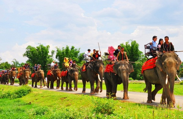 Du lịch bụi Buôn Mê Thuột trải nghiệm cưỡi voi Bản Đôn