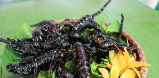 Món ngon và lạ bọ cạp bảy núi An Giang