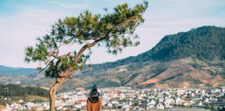 Khám phá đỉnh đồi Thiên Phúc Đức Đà Lạt