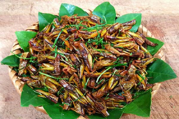 Đặc sản Sơn La côn trùng chôm chôm ngon mà lạ