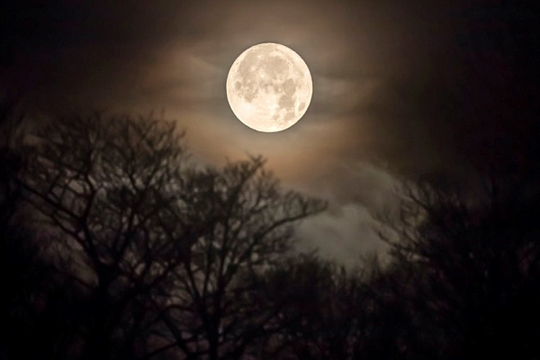 Mơ thấy trăng báo mộng trước điềm gì?
